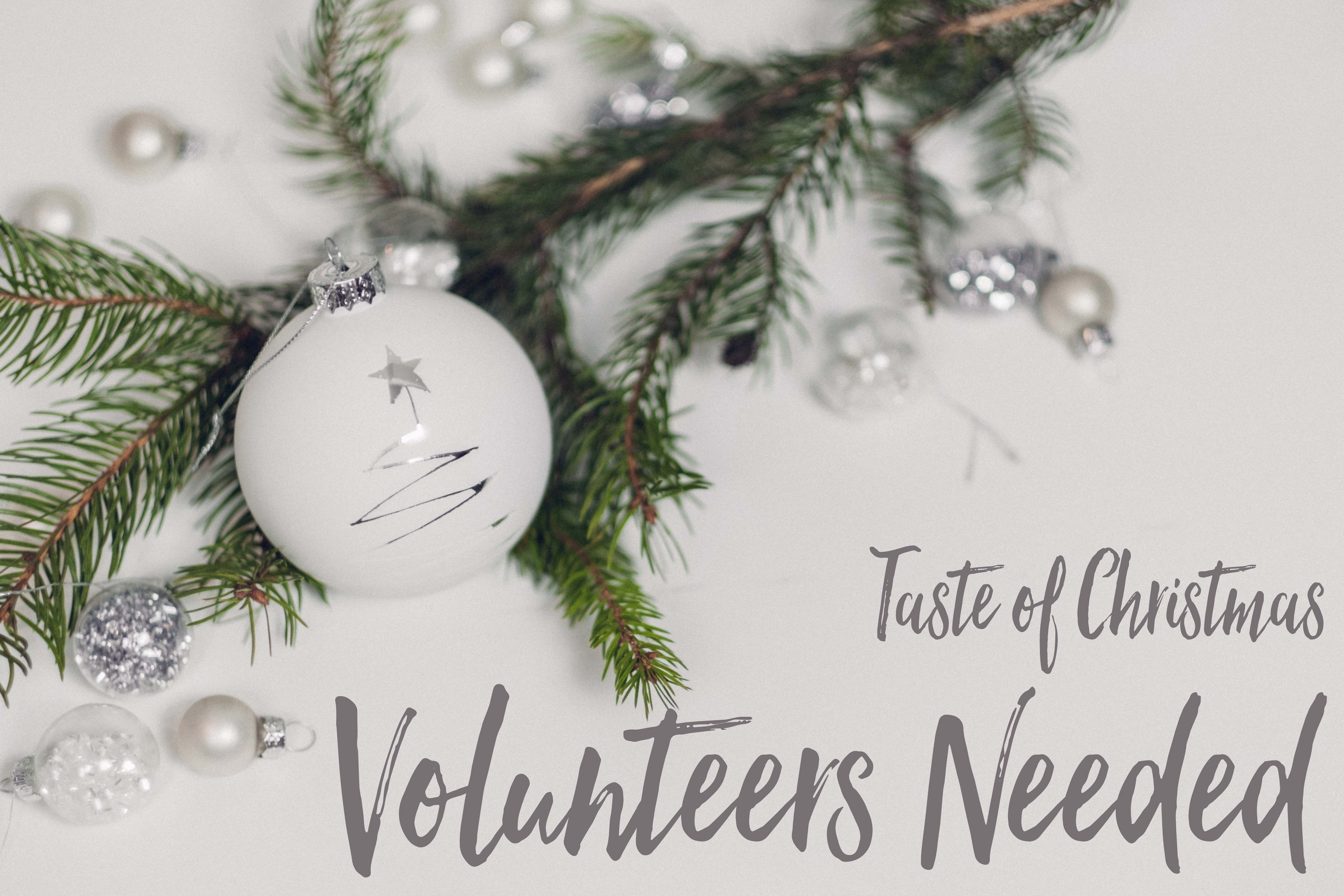 Taste of Christmas Volunteers